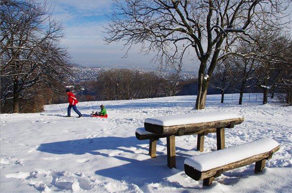Budapest, 2012. december 5. Egy férfi szánkón húzza gyermekét a behavazott Normafánál 2012. december 5-én. MTI Fotó: Sóki Tamás
