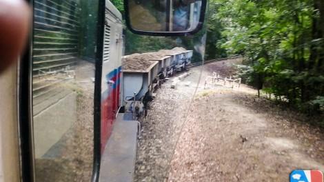 Az erdőben kanyargó, megpakolt tehervonat (Fotó: Rózsa János)