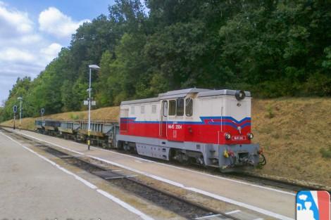 A tehervonat Szépjuhászné állomáson, a 135-ös számú vonatra várva (Fotó: Horváth Dávid)