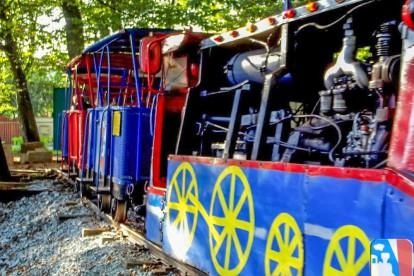 A gőzösnek álcázott mozdony