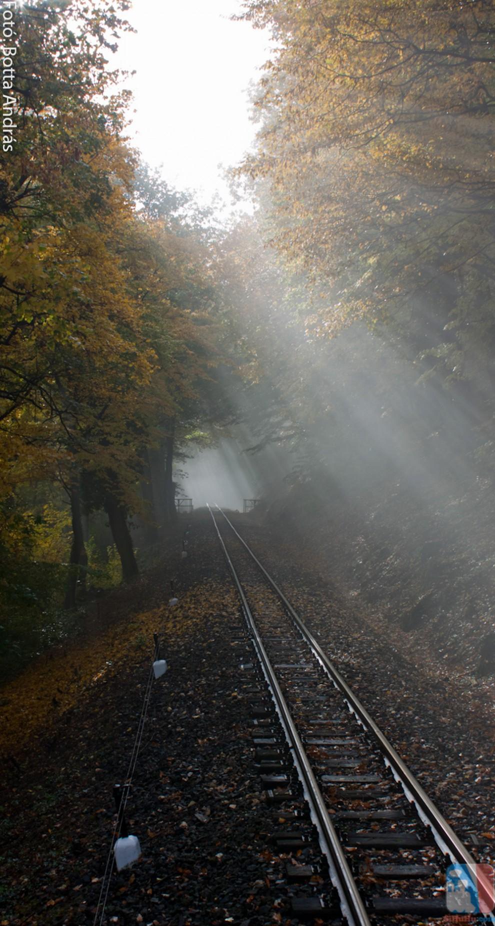 Ködös reggel a Gyermekvasúton!